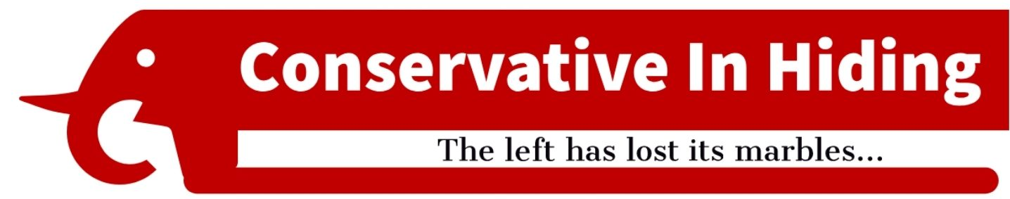 A Conservative In Hiding